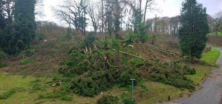 Sturm Friederike fegt übers Gut